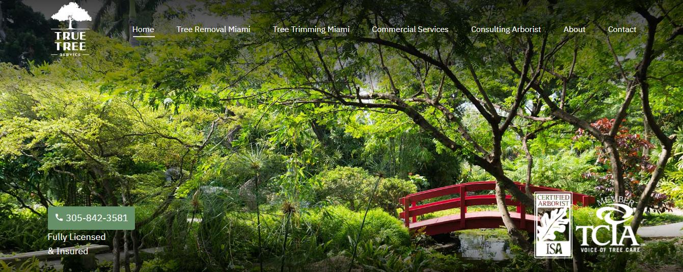 true tree services in miami