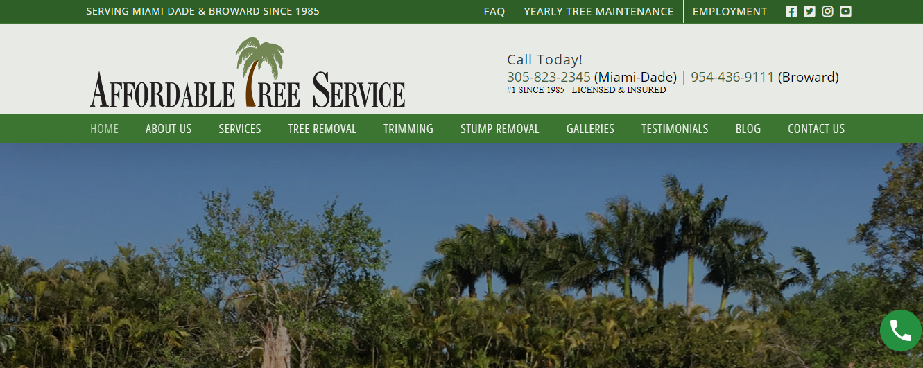 affordable tree services in miami