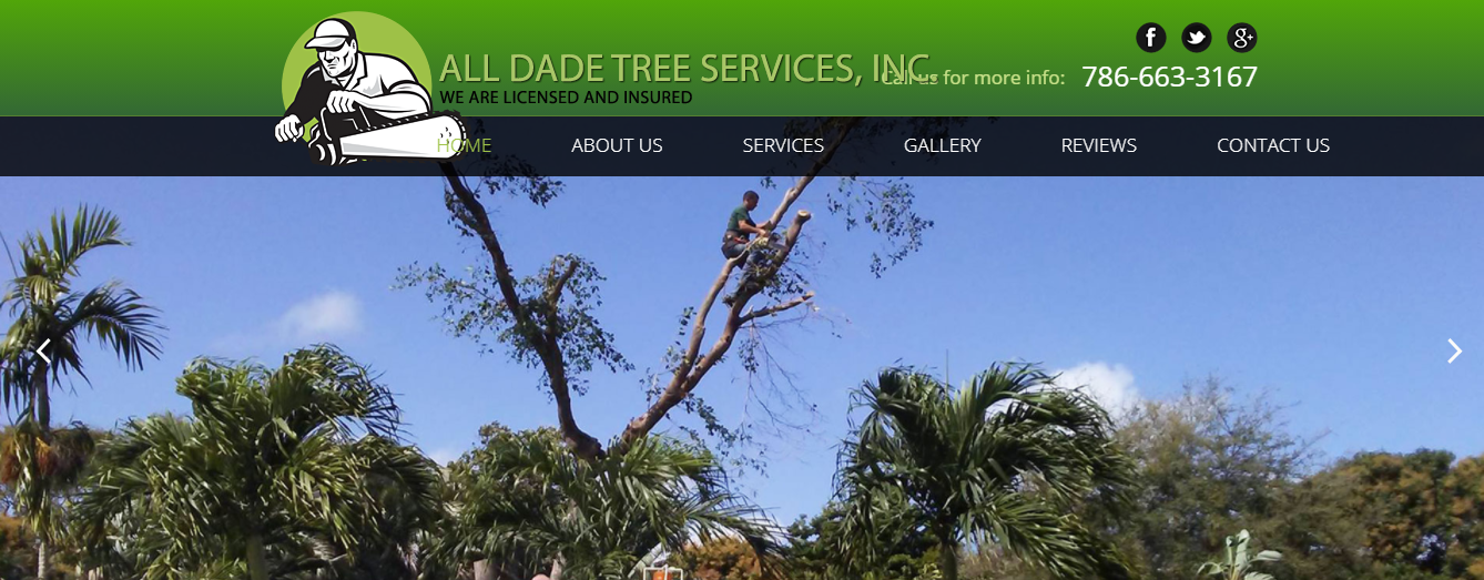 all dade tree services in miami