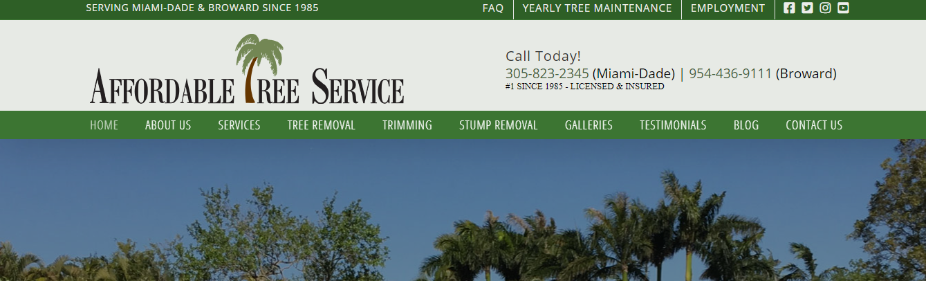 Affordable Tree Service in Miami
