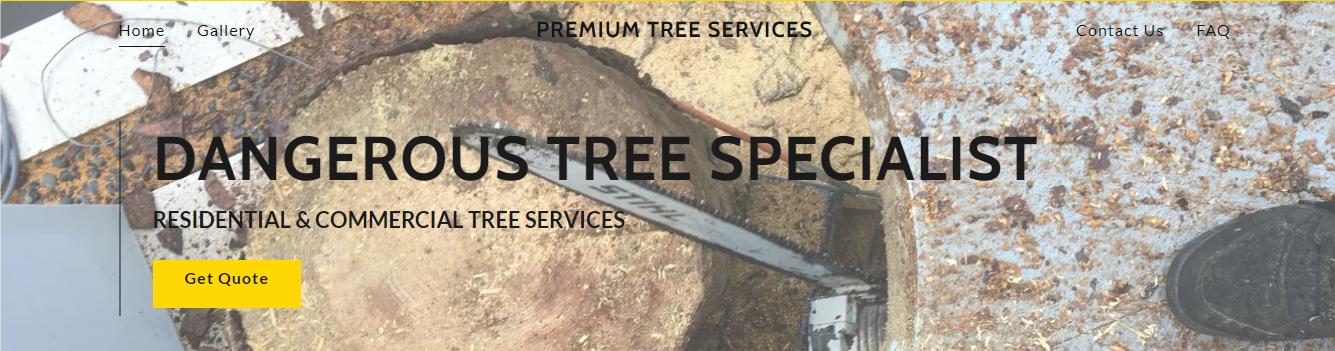 Premium Tree Services in Miami