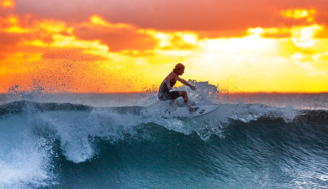 A surfer learning to surf riding a wave at sunset.