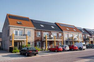 Green Development LLC Presents Energy Utopia A Future with Net Zero Carbon Emissions